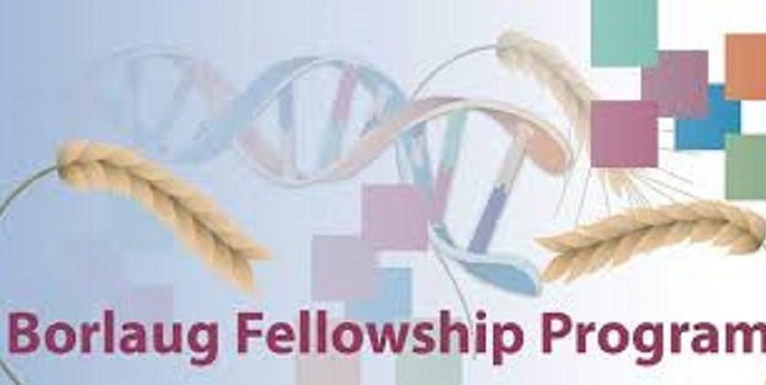 Borlaug Fellowship Program 2017